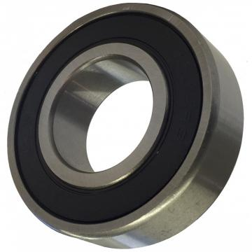 NTN Deep Groove Ball Bearing 6301 6303 6305 for Food and Beverage Processing Equipment